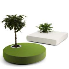 offecct, Green Islands