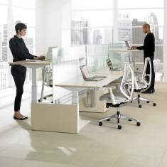 Teknion, Height-Adjustable Bench